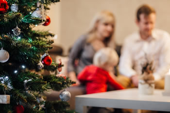 Christmas Family Risk Factors